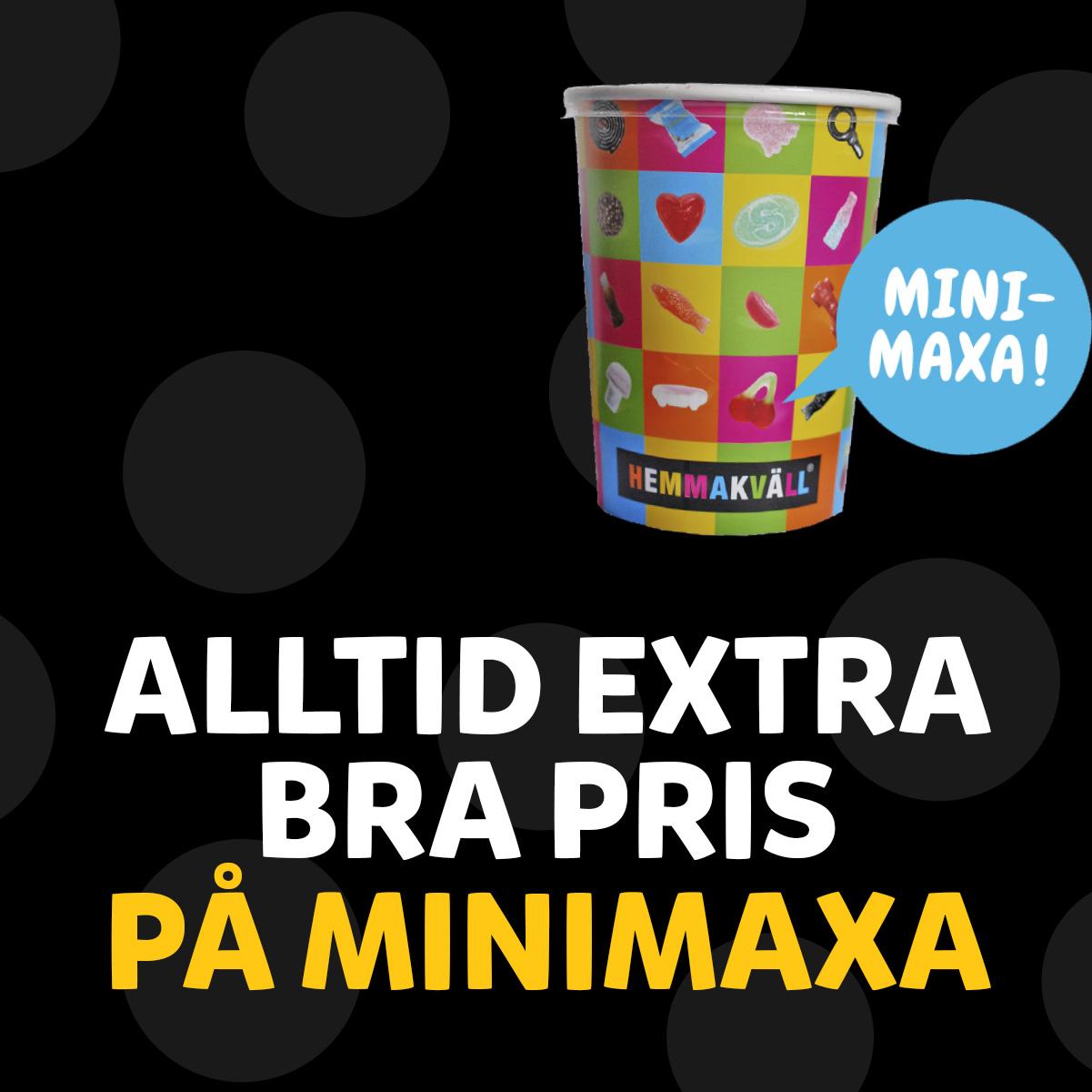 mini_maxa_v2